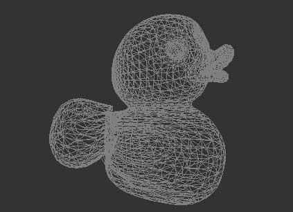 duckwarp.jpg